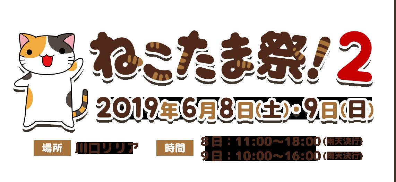 ねこたま祭!開催